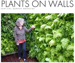 florafelt vertical garden planters make living walls easy deck