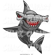 royalty free stock shark designs of cartoons