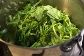 cuisiner les fanes de radis soupe verte de fanes de radis rosecardaillac cuisinier conseil