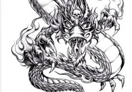 draw asian dragon head pencil drawing collection