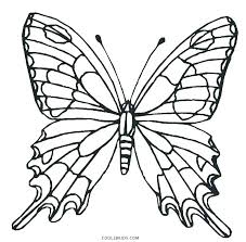 coloring pictures of small butterflies butterfly coloring page printable small butterfly coloring pages