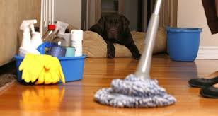 clean house here s how to clean your house easily after you move in the art