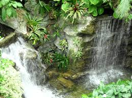 28 best grand ole opry hotel nashville tennessee images on inside waterfall at the grand ole opry hotel botanical garden center