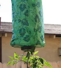 how to make an upside down tomato planter