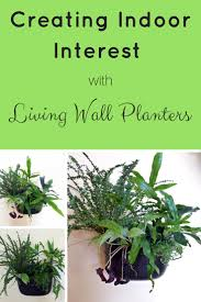 Indoor Wall Planters by Novelty 24 Pockets Vertical Garden Font B Planter B Font Font B