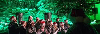 5th annual tree lighting