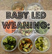 food prep meals baby led weaning food prep morgan manages mommyhood