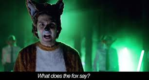 What Did The Fox Say Meme - what does the fox say experts weigh in huffpost