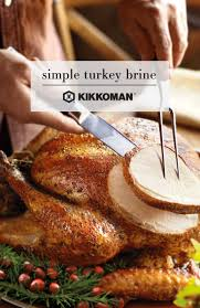 how to brine the turkey for thanksgiving top 25 best simple turkey brine ideas on pinterest smoked