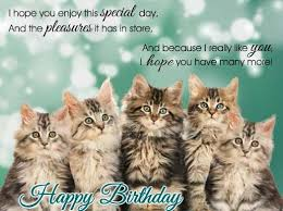 template free birthday ecards singing cats with free 25 unique free singing birthday cards ideas on song