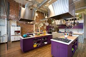 Cooking Islands For Kitchens Purple Kitchen Designs Pictures And Inspiration
