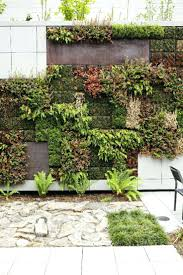 wall ideas grovert living wall grovert living wall planter uk