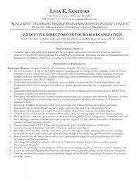 Sample Executive Director Resume by Resume Managing Director Resume Sample