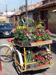 Flowers For Sale Photos From San Cristobal De Las Casas U2013 Peter U0027s Travel Blog