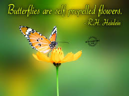 quotes about beauty short flower quotes about beauty go7a