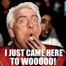 Ric Flair Memes - ric flair jr on twitter so i log onto twitter and see some cats