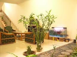 Bamboo Ideas For Decorating by Bamboo Decorations Home Decor With Bamboo Decorating Ideas