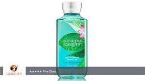 bath body works shea vitamin e shower gel eucalyptus spearmint bath body works shea vitamin e shower gel eucalyptus spearmint review test