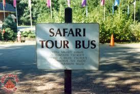 Six Flags Shuttle Bus Safari Tour Bus Stop At Six Flags Great Adventure Safari