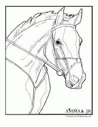 horse coloring pages pony saddle coloring pages kids