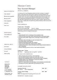 Video Resume India Sample Resume For Account Executive Marketing Account Executive