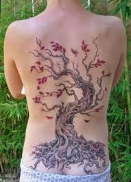 cherry blossom flower tree on back