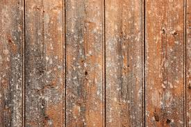 wooden panel wall background texture www myfreetextures com