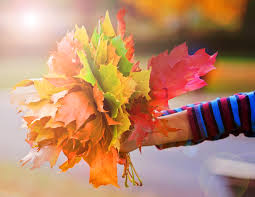 thanksgiving research for kids autumn facts for kids