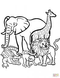 http colorings co coloring pictures african animals colorings