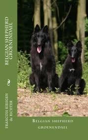 belgian sheepdog groenendael belgian shepherd groenendael francois kiesgen de richter