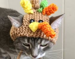 pumpkin cat hat thanksgiving cat hat fall hat for cats
