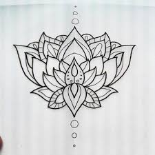 34 best lotus flower outline images on lotus