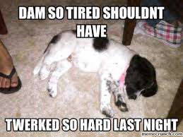 The Gallery For Gt Exhausted Mom Meme - exhausted meme 28 images the gallery for gt sleepy face meme