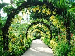Garden Of Ideas Singapore Botanic Gardens Singapore Singapore Condé Nast Traveler