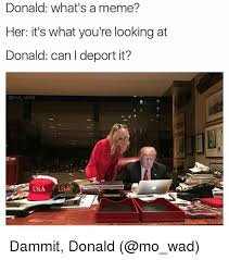 Whats A Meme - donald what s a meme her it s what you re looking at donald can i
