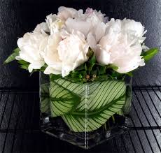 peonies flower delivery white peonies cube products local florist in san diego ca