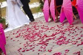 where can i buy petals diy petal confetti for your wedding mywedding