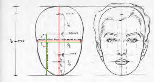 proportions and sculpting a face beginner u0027s