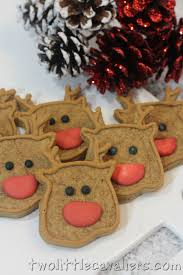 reindeer dog treats recipe two little cavaliers homemade dog