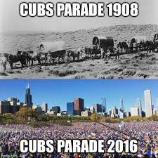 Chicago Cubs Memes - pin by rachel williams on cubs pinterest