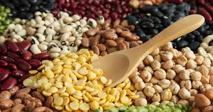 legumes cuisine vegan tips how to get protein when you allergy to legumes