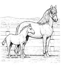 free printable horse coloring pages for kids horse coloring book
