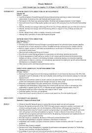 senior executive resume senior executive director resume sles velvet