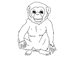 march coloring pages printable free printable chimpanzee coloring pages for kids