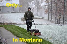 Montana Meme - montana mint the greatest website north of wyoming 15 memes that
