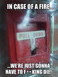 I Saw A Spider Meme - spider memes home facebook