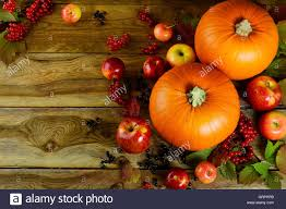 thanksgiving background free thanksgiving background with pumpkins berries and apples stock