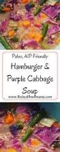hamburger u0026 purple cabbage soup the health nut mama