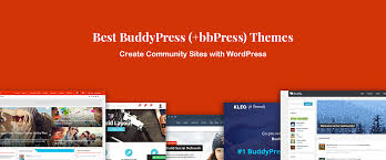 10 best buddypress themes for community plus bbpress