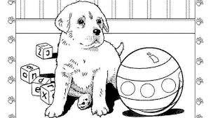 tuff puppy coloring pages murderthestout